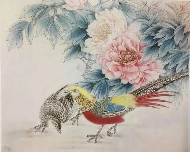 牡丹锦鸡(工笔画教程)之一
