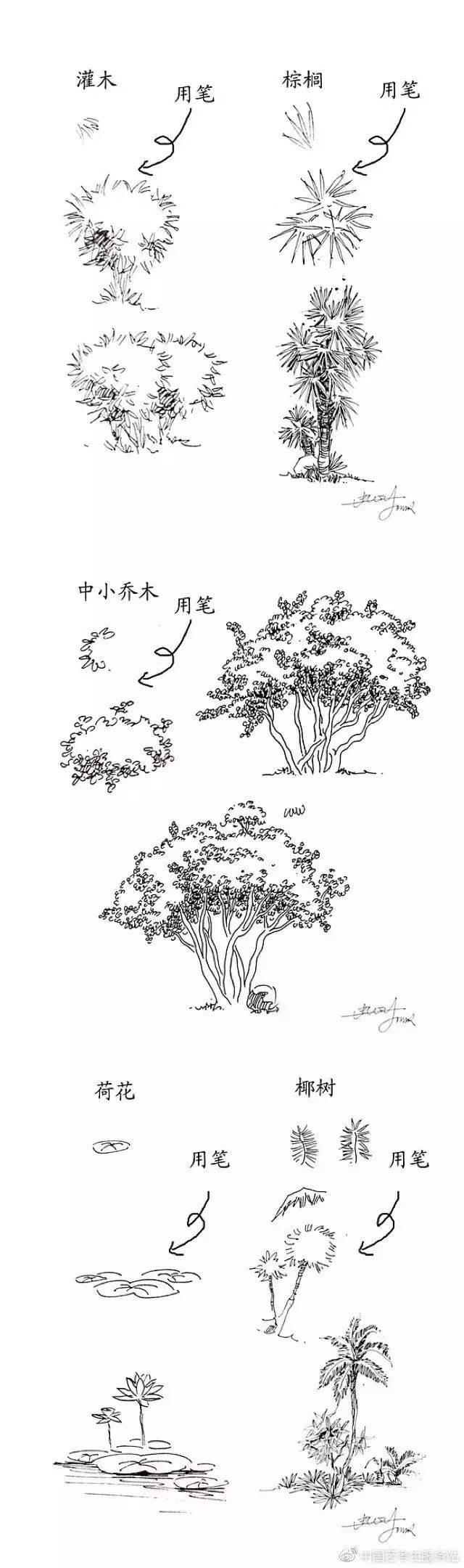 超全的風景速寫單體范圖參考,山林,樹木,石頭等等
