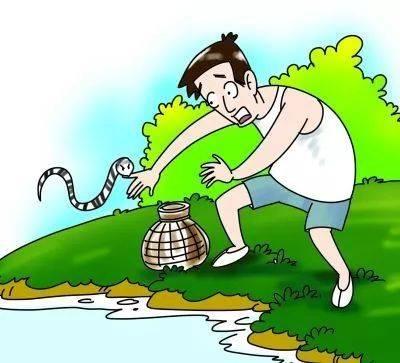 南宁发生多起被蛇咬伤事件,夏季出行一定要小心!