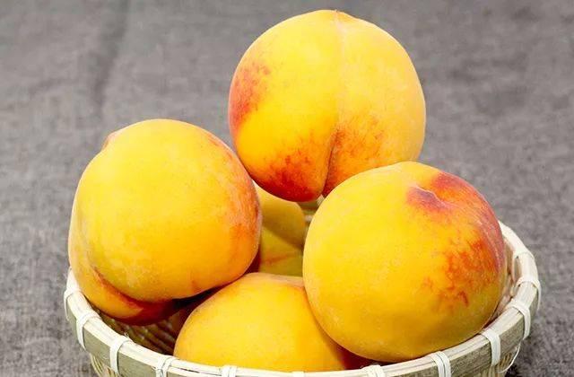能吃上一口新鲜的黄桃难能可贵 稀少但足够的鲜甜美味 成熟的黄桃糖度