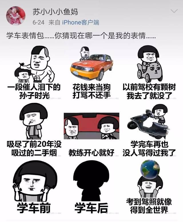 只有表情包才能形容学车的小团子的内心.图片