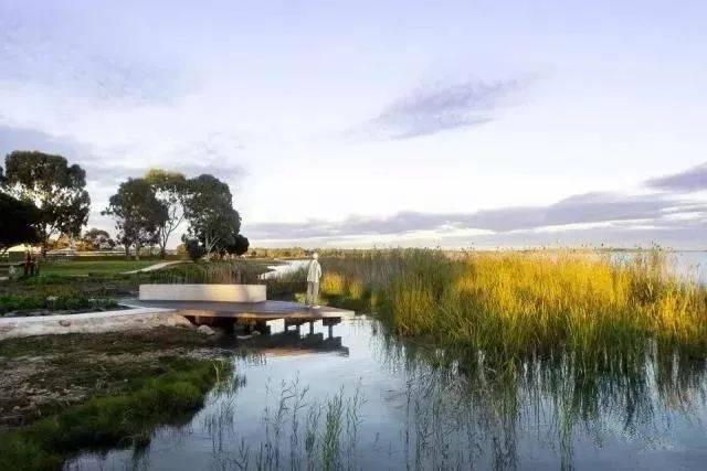 4. 湿地公园岸线植物配置