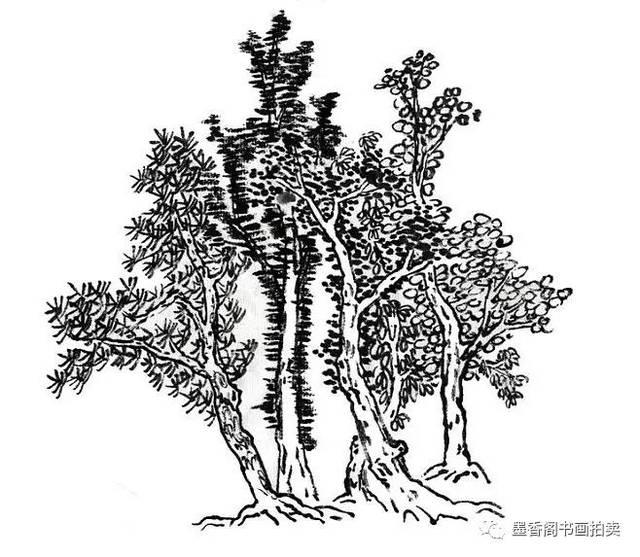 自然界树根有露根和藏根两大类,露根突出地表,藏根埋在土里.