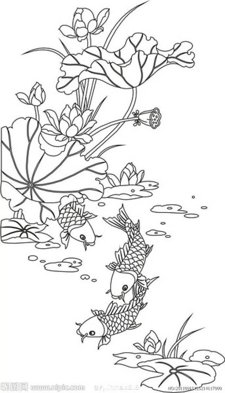 手绘-单色线稿,上色练习素材