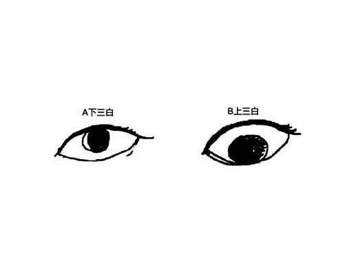 如何通过眼睛来看一个人的人品好坏
