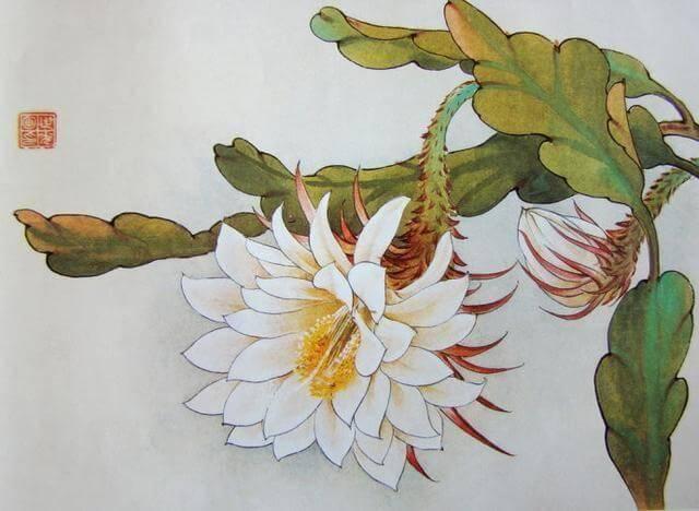 42幅 工笔花卉图谱,供你查阅参考图片