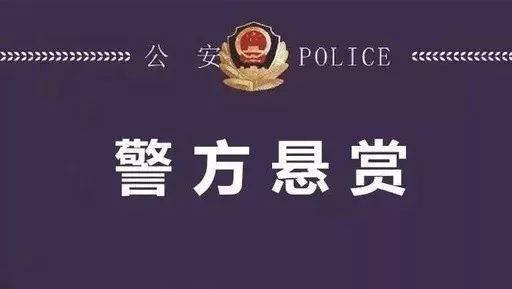 警方悬赏20万!东莞全城通缉这名女子!