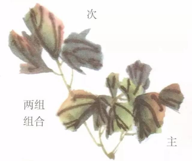 国画牡丹叶子和枝干的画法,简单易学!图片