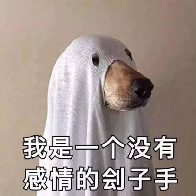 狗狗表情包:做狗不好吗?为什么要恋爱图片