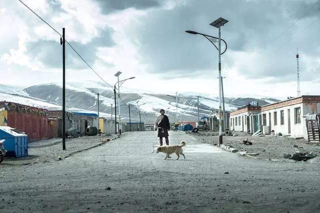 万玛才旦新作《撞死了一只羊》入围威尼斯电影节