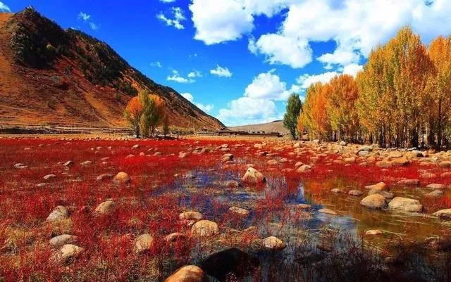 壁纸 大峡谷 风景 640_401