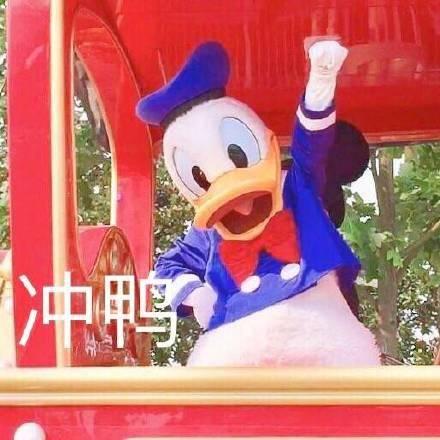 唐老鸭约人表情包:今天吃什么鸭,求安排鸭,什么时候出去玩鸭图片