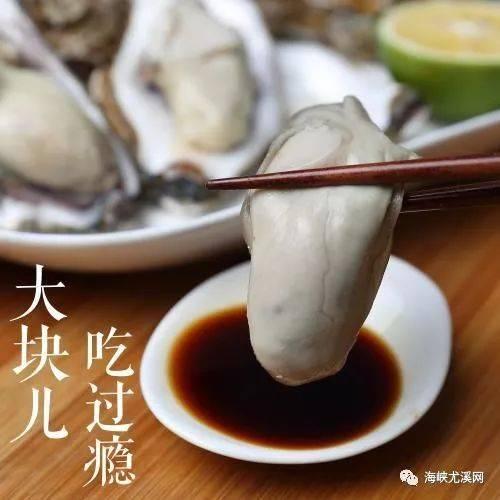 9元限量抢购疙瘩/v疙瘩生蚝一打(12个),夏天玉米面是水开后倒不起蒜蓉吗图片