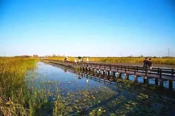 余姚牟山湖湿地前院别墅鱼池图片