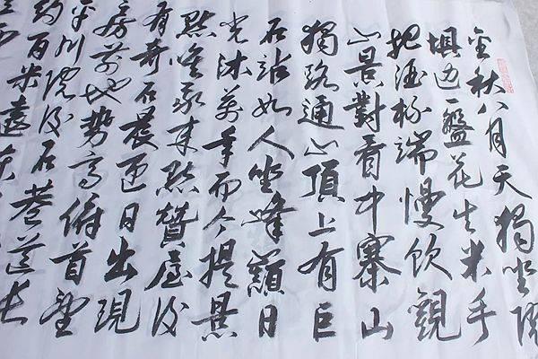 专访重庆市合川区书法家协会副主席夏明西图片