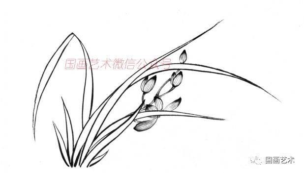 蔡公衡《梅兰竹菊画法大全》之兰花的画法