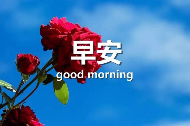 睁开眼睛,给你一个轻轻的祝福,愿它每分每秒都带给你健康,好运和幸福.
