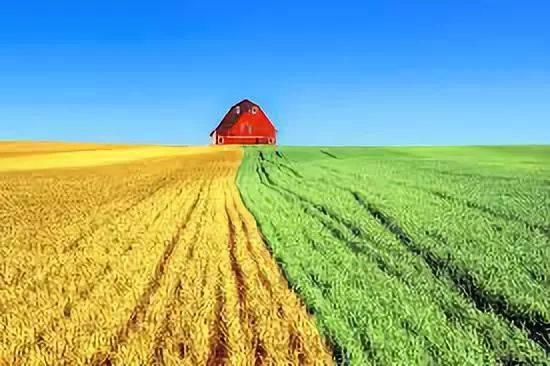 种地壁纸_机器人已经学会种地,农民伯伯可以省心了
