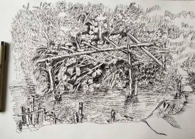 42,喜杨杨的钢笔画临摹