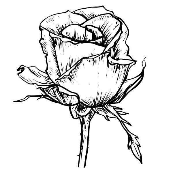 创意黑白画-简单实用的创意图片