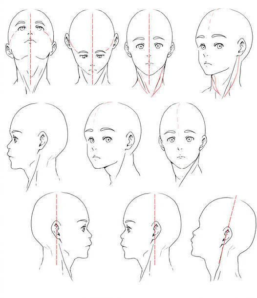 画日系漫画人物头部技巧,相信很多学习日系漫画的同学,在搜索之后