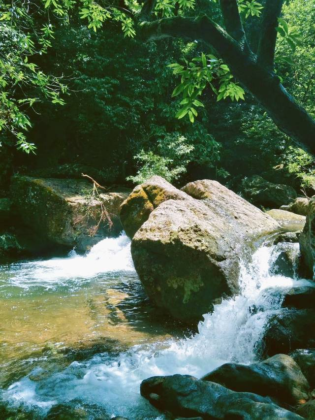 广西钦州有个八寨沟, 深藏十万大山秀美惊艳-旅游频道