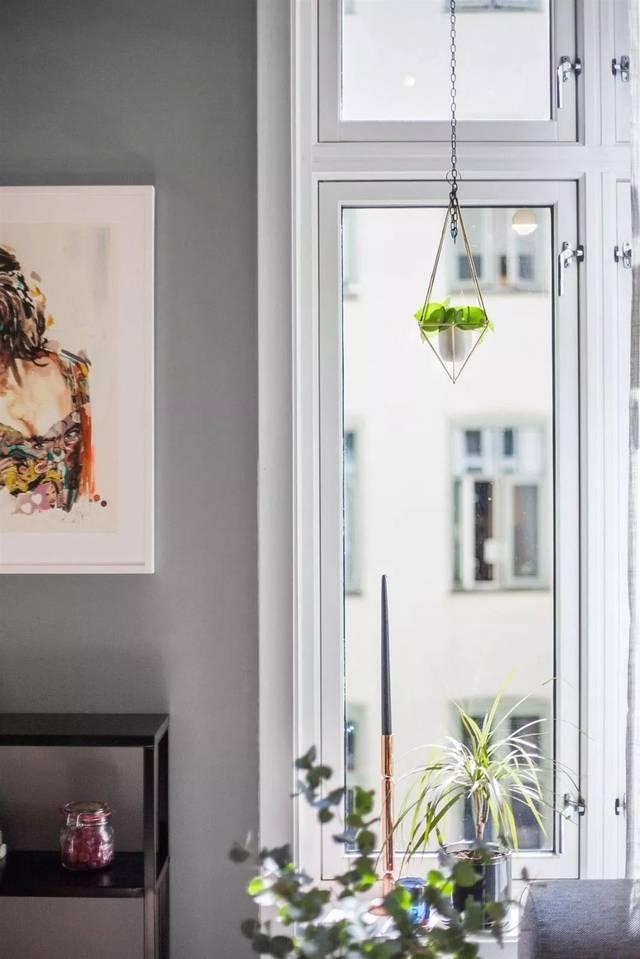 绿植 北欧 手绘 客厅