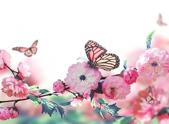 超大多层花朵钩织图解