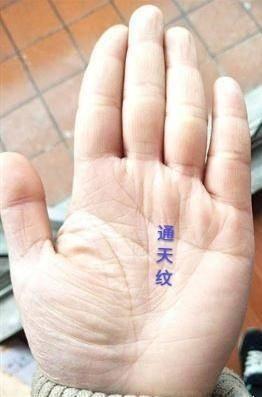 手相命理解说:手指关节大命好吗?   第座网