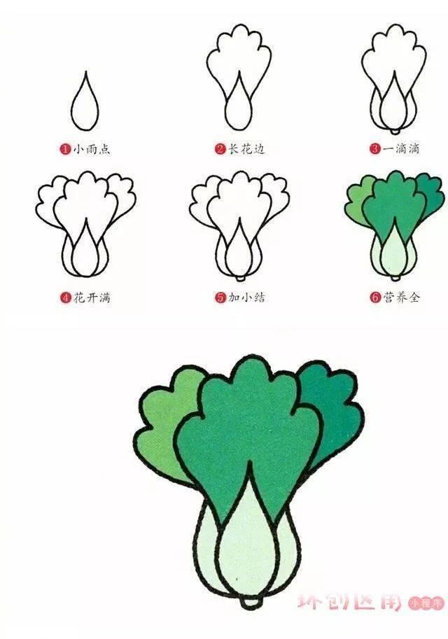 文 | 格格 一,卡通人物简笔画 樱桃小丸子 荷花 草莓 白菜 原来画画