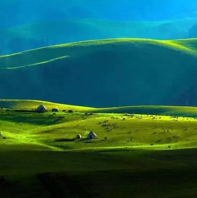 萨克斯版《父亲的草原母亲的河》,感人至深的天籁,听醉了