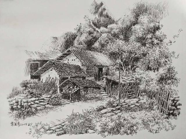 7,沈水林的钢笔画