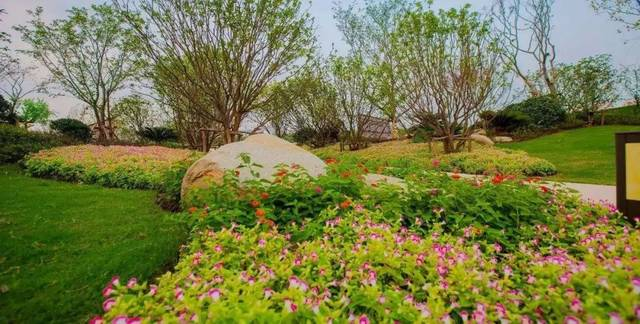 三大公園環繞,獨墅湖生態公園,尹山湖市政公園和體育公園,人均綠化是圖片
