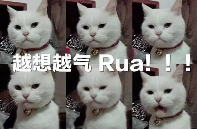 """画外音是""""越想越气,rua!""""图片"""