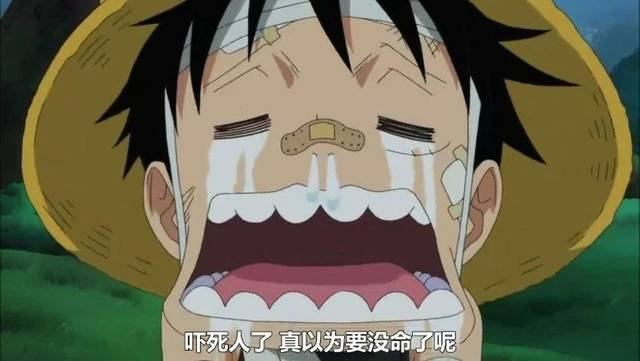 《海贼王》里可以做表情包的魔性瞬间,笑到停不下来!图片