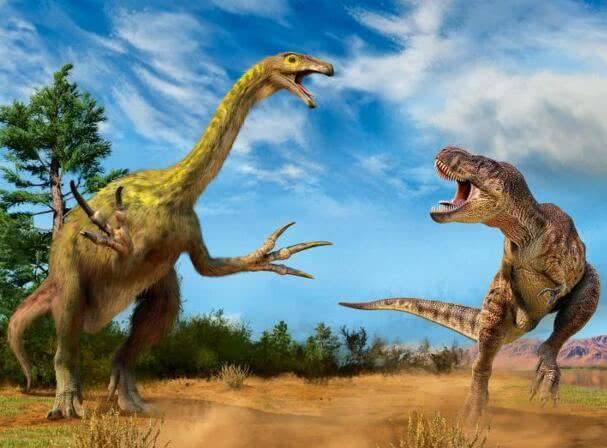 镰刀龙是肉食性恐龙中一种特化的类群,其祖先为小型腔骨龙类,与暴龙相