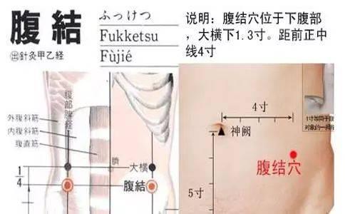 腹��_腹结,足太阴脾经穴.在下腹部,大横下1.3寸,距前正中线4寸.