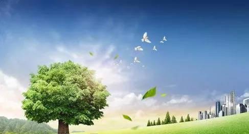 纸质出版物使用绿色油墨,环保更健康