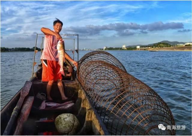 人体艺术小岛南_九江海寿诗歌岛之旅 在西江江心,有一个扁长形的悬水小岛,叫海寿岛.