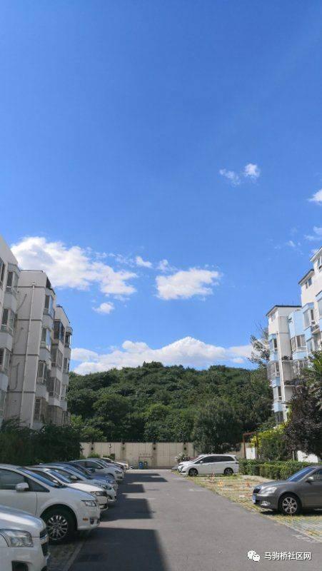马桥人口_给我100套居住区整体规划方案,我能hold住整个房地产