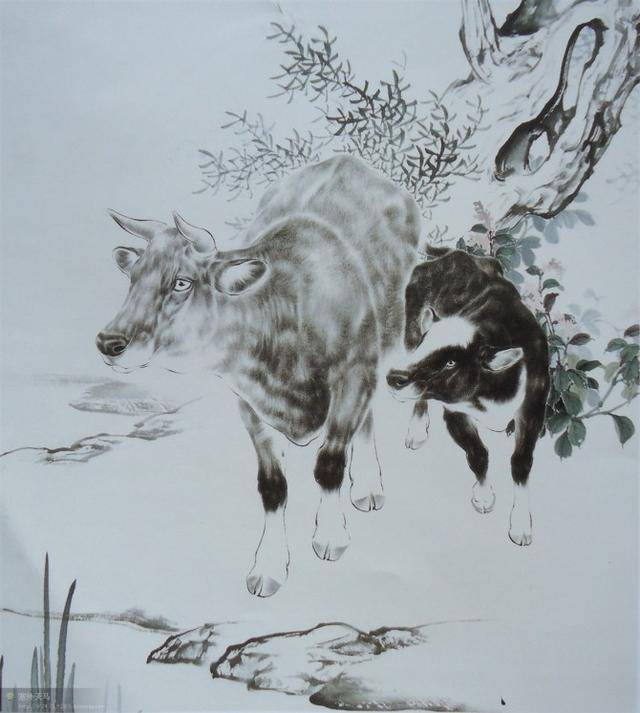 【工笔画-短毛动物】羊,牛的几种画法图片