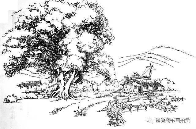 风景速写--树的画法