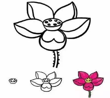 学一学画一画,幼儿园植物简笔画大全_手机搜狐网图片