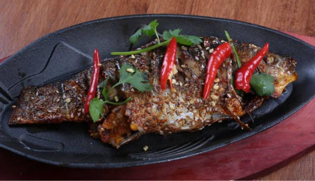 罗非鱼这样做好吃,吐口焖炸烤都有,样样美味,简单易学!4399羊驼蒸煮水游图片