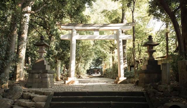 基地 宮 和 秘密 東京 冬藏秘密基地