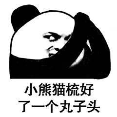 熊猫金馆长的新发型表情包图片