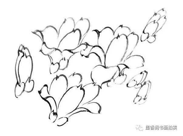 国画技法:玉兰花的详细画法及步骤图片