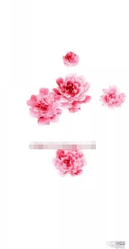 芙蓉花国画的绘画技法,写意芙蓉步骤详解图片