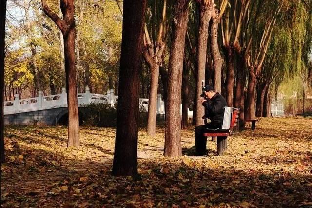 地址:北京市大兴区旧宫镇庑殿路 公交线路: 乘坐公交576路至德贤路图片