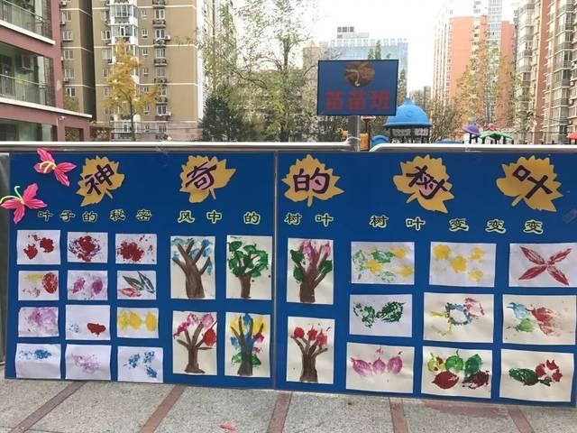 叶子博物馆——九龙幼儿园大中小班项目活动图片